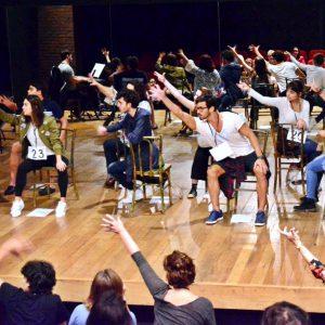 Curso de Teatro Musical de Charles Möeller: 'Da Audição a Estreia' - Prática de Montagem do musical 'Pippin'.  Theatro Net Rio - Mai/Jun 2017
